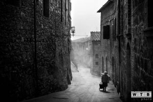 san giminiano italy fog silhouette 2013